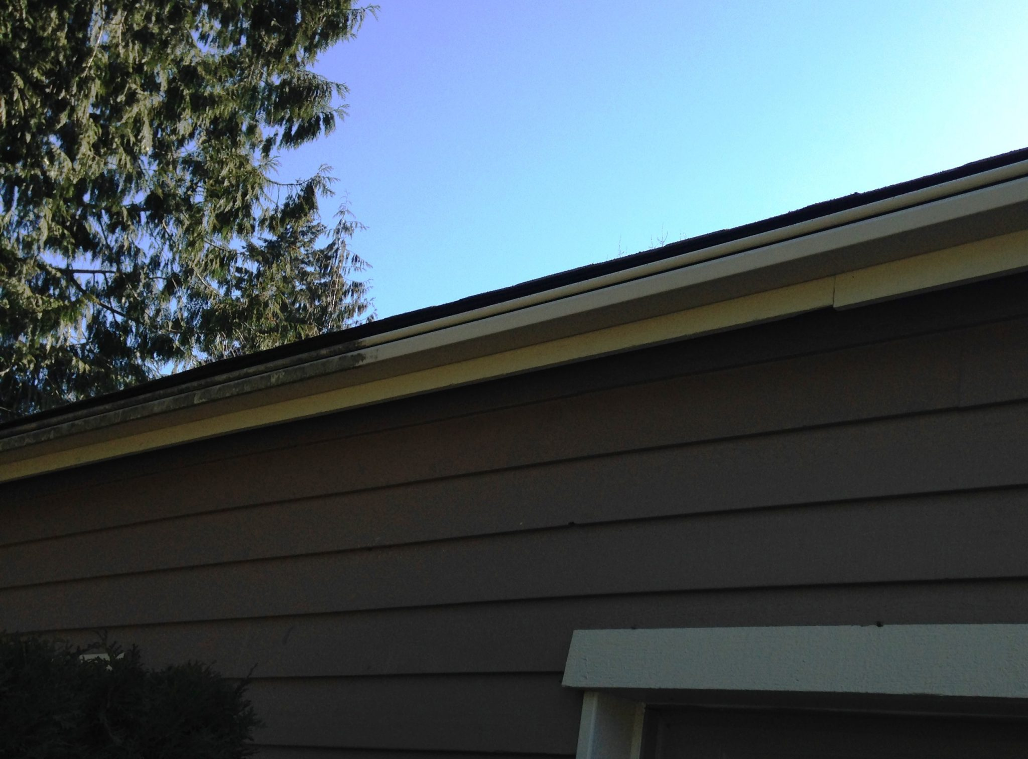 Fircrest  Gutter Cleaning Before and After