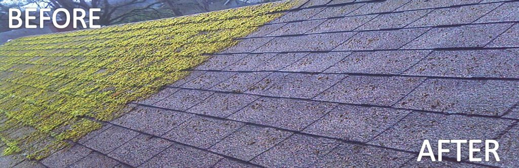 Roof Cleaning & moss Control Before - After