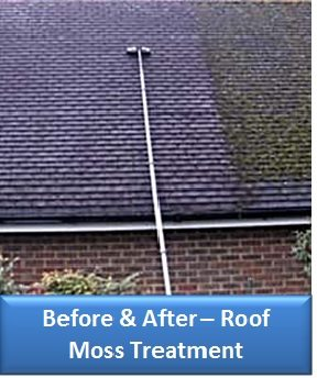 Madrona Roof Moss Treatment Before and After