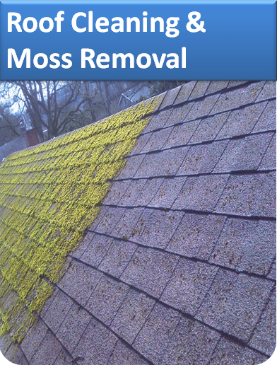 Roof Cleaning and Moss Removal Service